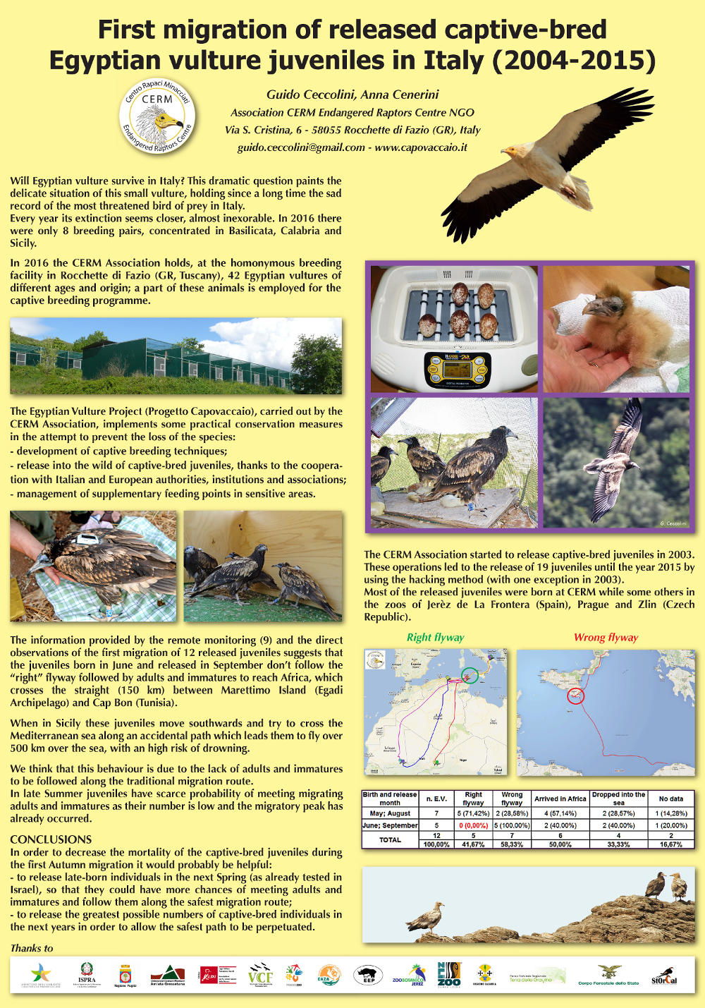 "Poster ""First migration of released captive-bred Egyptian vulture juveniles in Italy (2004-2015)""."